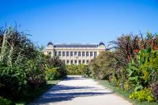 3-B-Jardin-des-Plantes