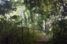 8-B-Flickr-Jardin-Sauvage-St-Vincent-B