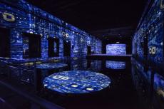 B-Klimt-5-©-Culturespaces-Anaka-Photographie